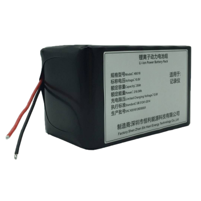 10.8V20.0Ah (3S6P) Lithium-ion Battery Pack HB019 for DV Video