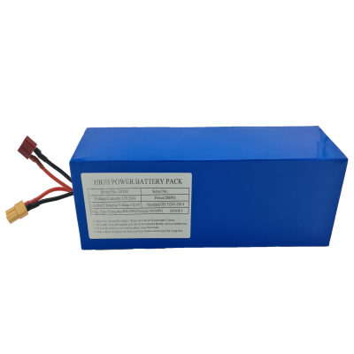 12V24Ah (3S12P) Lithium-ion Battery Pack